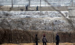North Korea's Food Crisis Pushes the Envelope on Politics and Aid