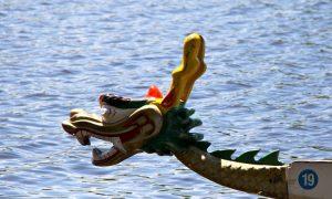 Dragon Boat Festival Resounding Success in Ottawa
