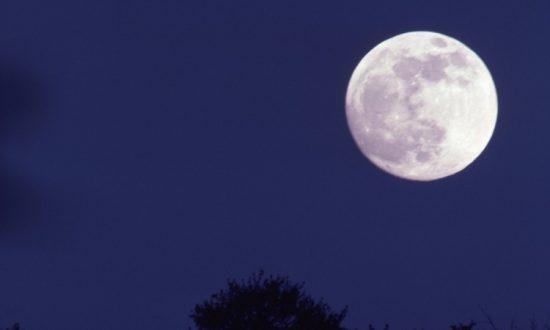 Moon Mining a Step Closer With New Lunar Soil Simulant