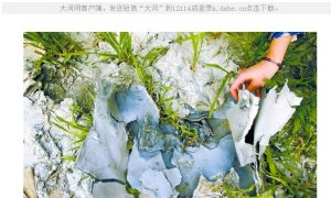 Crops Irrigated With Industrial Wastewater in China