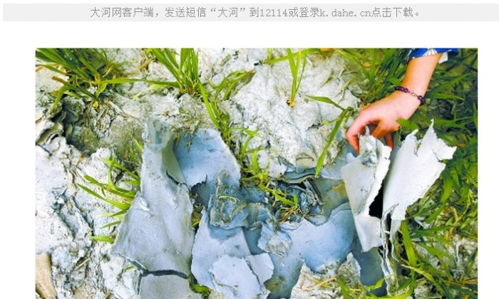 A thick layer of pulp has settled on the surface of fields in Hebei Province, where farmers were forced to use wastewater from a paper mill to irrigate their crops. (Dahe.cn)