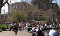 Spring Arrives in Madison Square Park