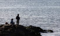 Trout and Salmon Fishing Season Opens in New York