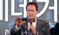 Schwarzenegger: Pie Eaten in Mass Quantities During Bodybuilding