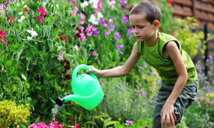 Four Gardens to Grow With Your Kids