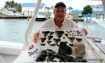 Venice, Florida: Shark's Tooth Capital of the World