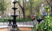 New Yorkers and Tourists Enjoy Springtime (+Video)
