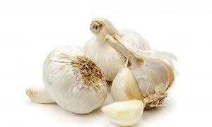Garlic: Nature's Antibiotic