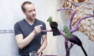 This Is New York: Daniel Kopulos on Saving Guatemalan Jungle Animals