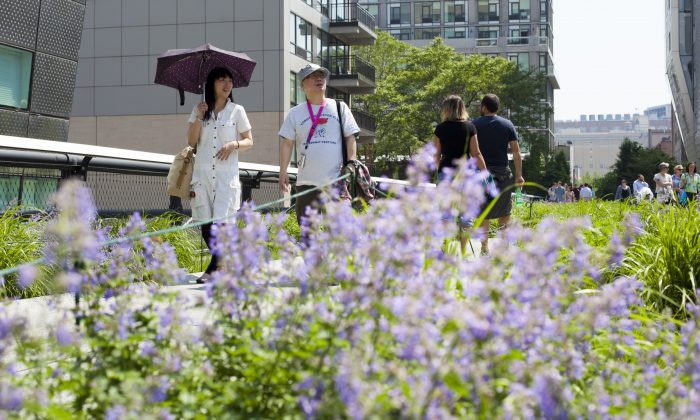 People enjoy a walk along the High Line on a sunny afternoon in New York, May 29, 2013. (Samira Bouaou/The Epoch Times)