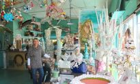 Beachcomber Art: Turning Shells Into A Successful Business