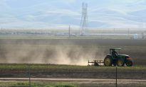 Valley Fever Hits Southwestern States