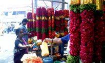 Poor Indians Seeking Joy in Humble Professions