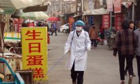 H7N9 Bird Flu Spreads by Direct Contact in Mammals