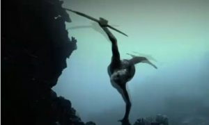 Mermaids New Evidence 2013: Discovery Channel's New Special Explores Mermaids (+Videos)