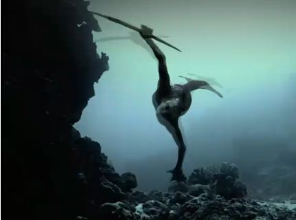 "A screenshot from the preview of ""Mermaids: The New Evidence,"" purportedly showing a mermaid. (Screenshot/Discovery Channel)"