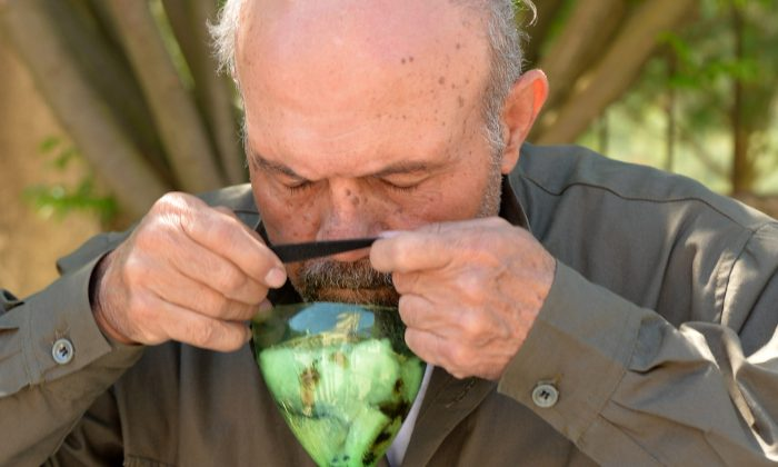 Abu Tarek, a 74-year-old retired army officer, tries on a homemade gas-mask, assembled using a plastic bottle, coal, cotton, gauze, cola, and cardboard, for protection against chemical weapons, in Syria's northern Latakia province. After months of allegations that the Syrian government has been using chemical weapons against the opposition, Britain, France, and the United States all said on May 4 that they have found evidence of sarin gas being used in the civil war. (Miguel Medina/AFP/Getty Images)
