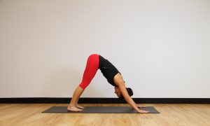 Move of the week: Down Dog Push Up + Leg Extension