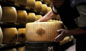 GMOs in Italian Artisan Foods: Traditions Impacted by Biotech?