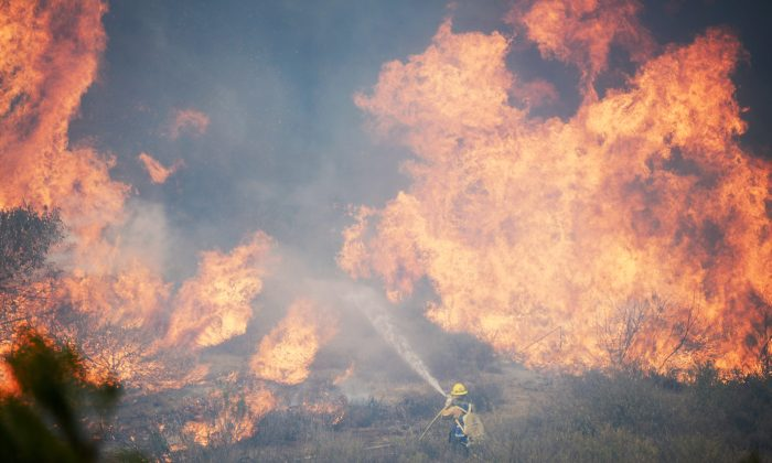 A file photo of a U.S. Forestry Service fire fighter fighting a wall of fire during an out of control wildfire in Camarillo, Calif., on May 2, 2013. Wildfire season is getting longer and the demand for people willing to take on the dangerous job of firefighting may grow as the climate changes. (Kevork Djansezian/Getty Images)