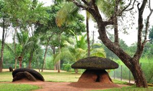 Megalithic Umbrella Stone Burial Site in India (Photos)