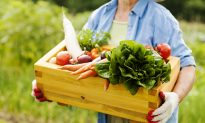 Choosing Nutrient-Dense Food