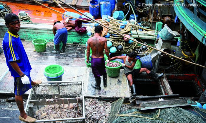 Workers on a Thai fishing boat. A foundation investigating pirate fishing found evidence of human trafficking, labor abuse, and the use of violence in the Thai seafood industry. (Courtesy of Environmental Justice Foundation, www.ejfoundation.org)