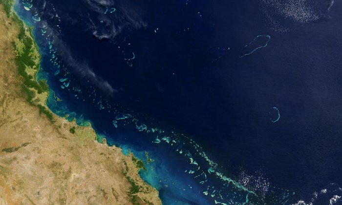 A 2004 NASA satellite image of the The Great Barrier Reef (light blue). Stretching along more than 2,000 km (1,200 miles) of Australia's eastern coast, it is one of the world's formost natural wonders. (HO/AFP/Getty Images)