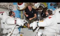 Spacewalk Live-Stream Video