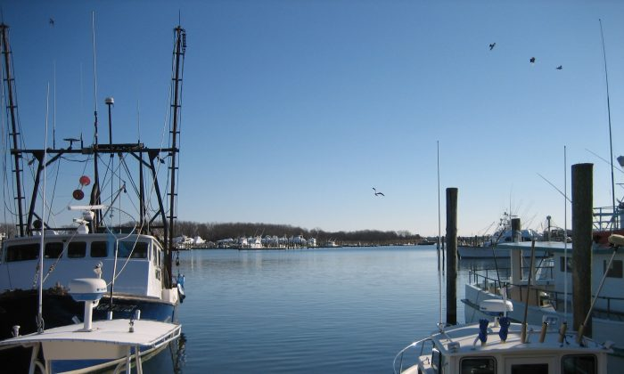 Fishing boats moored at Montauk, Long Island, during winter. (Charlotte Cuthbertson)