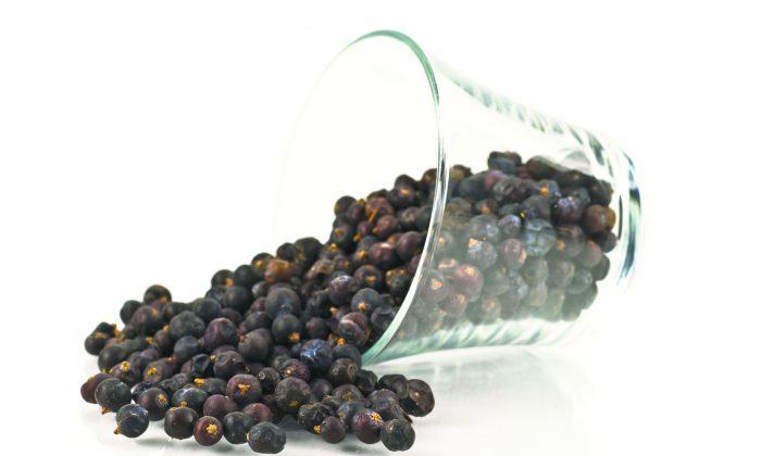 Juniper berries. (Luisa Puccini/photos.com)