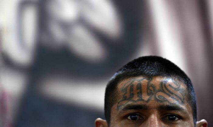 A member of the Mara Salvatrucha (MS-13), is pictured on Monday, March 4, 2013 in El Salvador. (Marvin RECINOS/AFP/Getty Images)