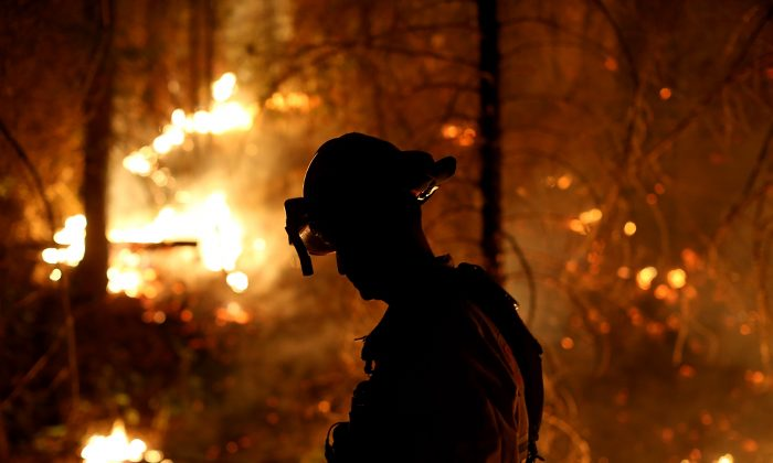 A firefighter from Cosumnes Fire Department monitors a back fire while battling the Rim Fire on August 22, 2013 in Groveland, California. (Justin Sullivan/Getty Images)
