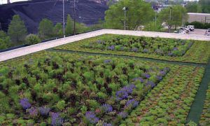 5 Awesome Green Roof Projects