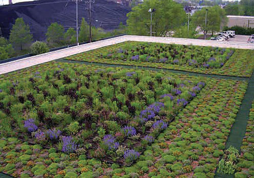 An example of a green roof from the EPA. (Environmental Protection Agency)