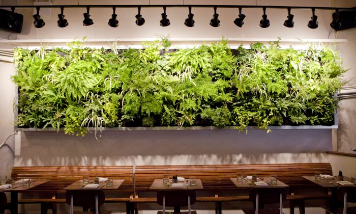 The interior of Atrium Dumbo, a new restaurant that overlooks the Brooklyn waterfront. (Samira Bouaou/Epoch Times Staff)