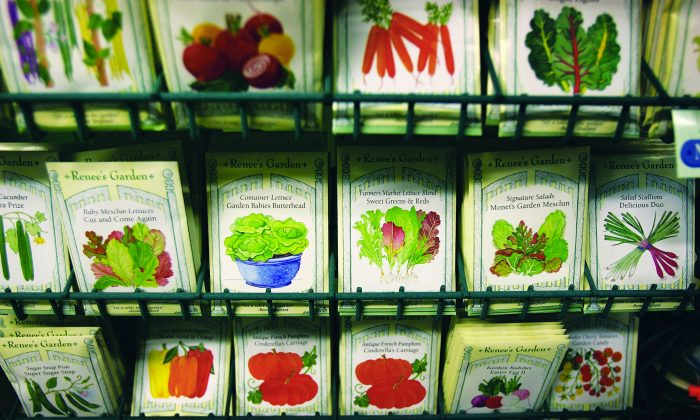 Vegetable seeds are sold at a nursery in Pasadena, Calif. Not all conscientious farms, or growers can afford to go certified organic, but that doesn't mean they're less healthy. (David McNew/Getty Images)