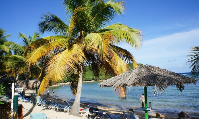 The beach at the Bolongo Bay Resort on St. Thomas, USVI. (Beverly Mann)