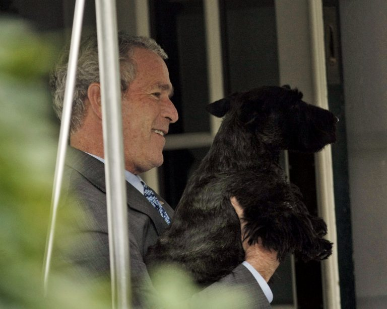 President Bush picks-up his dog Barney, a Scottish Terrier, before walking into the main residence of the White House following his arrival, Wednesday, Oct. 15, 2008 in Washington. (AP Photo/Pablo Martinez Monsivais)