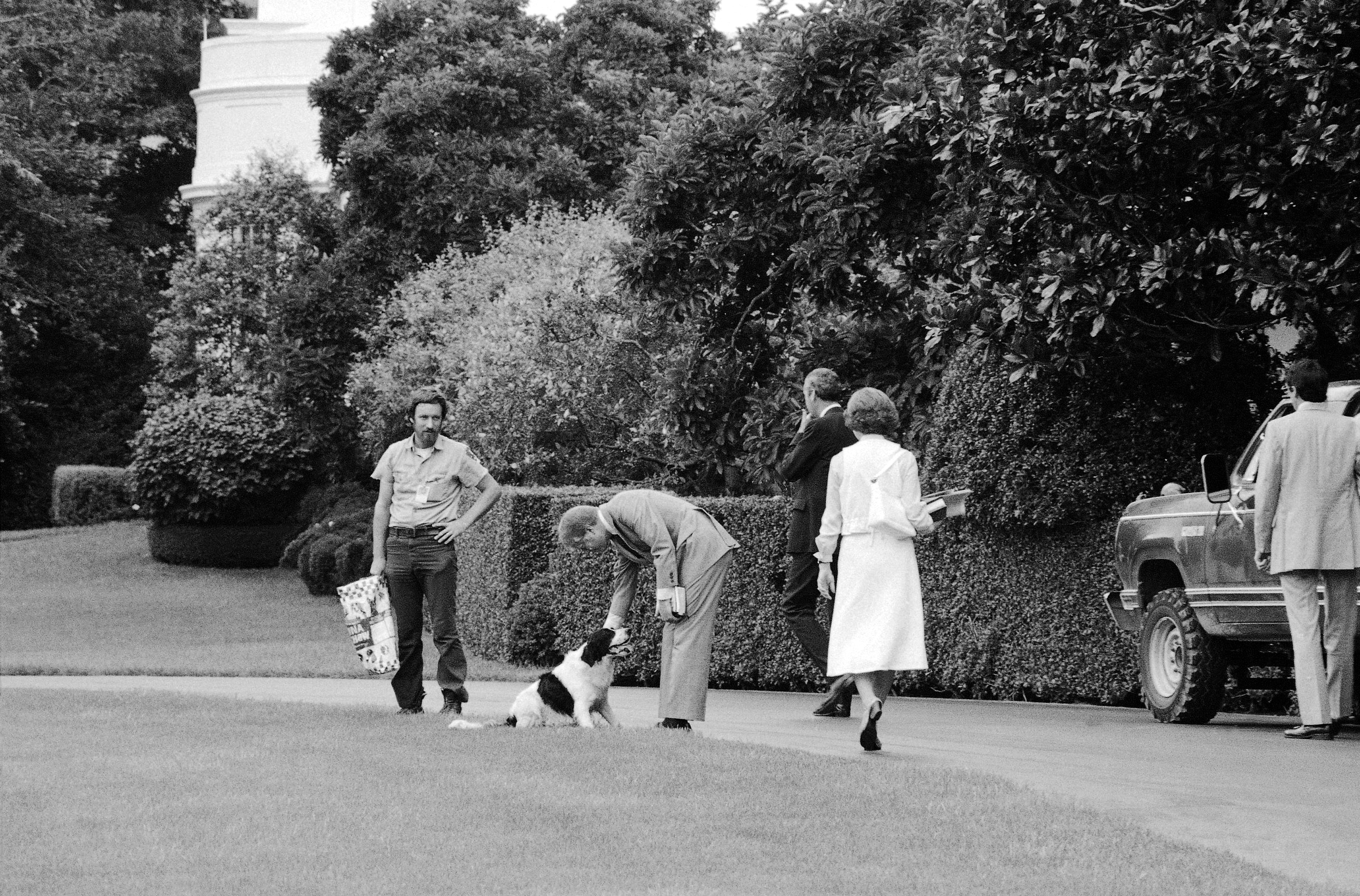 """President Jimmy Carter and Rosalynn Carter play with their dog """"Grits"""" on the south lawn of the White House in Washington D.C. after returning from church on Sunday, August 6,1978.  (AP Photo)"""