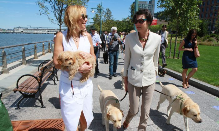 Madelyn Wils (L), President and CEO of Hudson River Park Trust, and Diana Taylor (R), chair of the board of directors of Hudson River Park Trust, walk with their dogs toward the newly opened dog park between North Moore and Hubert Streets in Lower Manhattan on August 5, 2013. (Ivan Pentchoukov/Epoch Times)