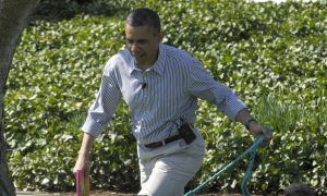 10 Presidential Pets, Including New Obama Puppy, Sunny