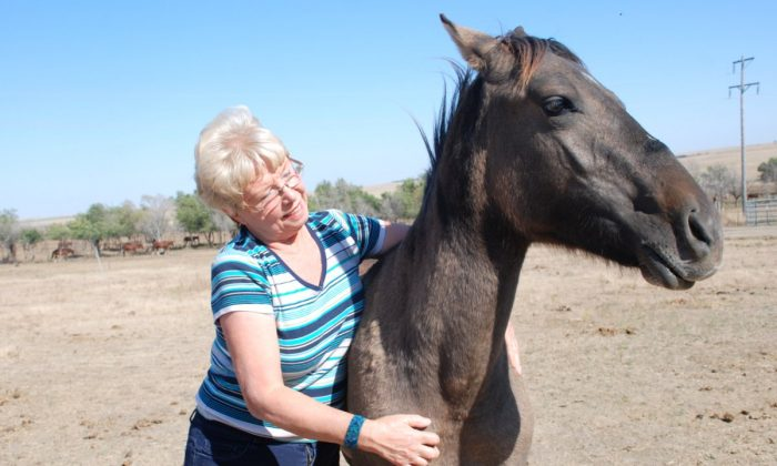 ISPMB President Karen Sussman with a mustang. Without continuing vigilance and protective legislation wild horses in the U.S. will be shipped to slaughter for human consumption in Europe and China. (Copyright 2013 Myriam Moran)