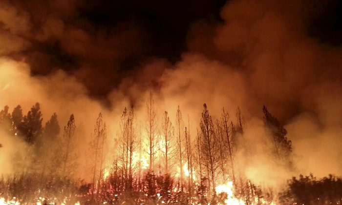 The Rim Fire burns near Yosemite National Park, Calif. The wildfire outside Yosemite National Park — one of more than 50 major brush blazes burning across the western U.S. — more than tripled in size overnight and still threatens about 2,500 homes, hotels and camp buildings. (AP Photo/U.S. Forest Service)