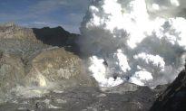 White Island Eruption: Volcano Erupts off Coast of New Zealand