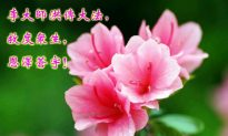 Moon Festival Greetings Express Gratitude and Freedom