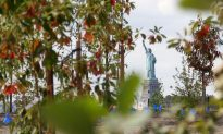 A Glimpse Into the Future of Governors Island