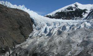 Alaska Glacier Thaws: Ancient Forests Uncovered as Mendenhall Glacier Retreats