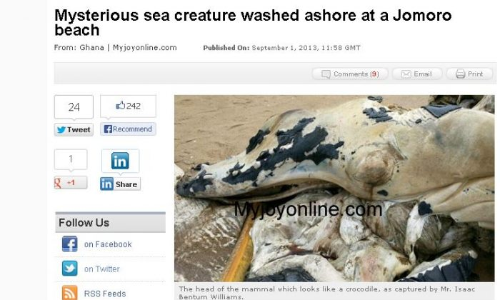 A screenshot of My Joy Online, a Ghanaian news agency, shows a purported mysterious sea creature, which is described by a local as having a head which looks like a crocodile, and a tail similar to a whale's. (Screenshot/My Joy Online)