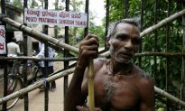 UN Urges India to Shut Gigantic Steel Project